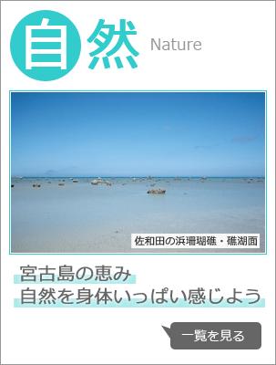 自然:宮古島の恵み  自然を身体いっぱい感じよう