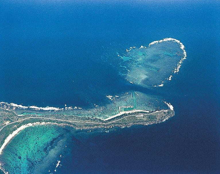 東平安名岬の隆起珊瑚礁海岸風衝植物群落04