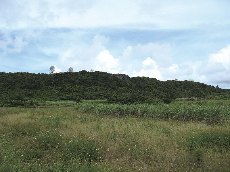 大嶽公園の植物群落