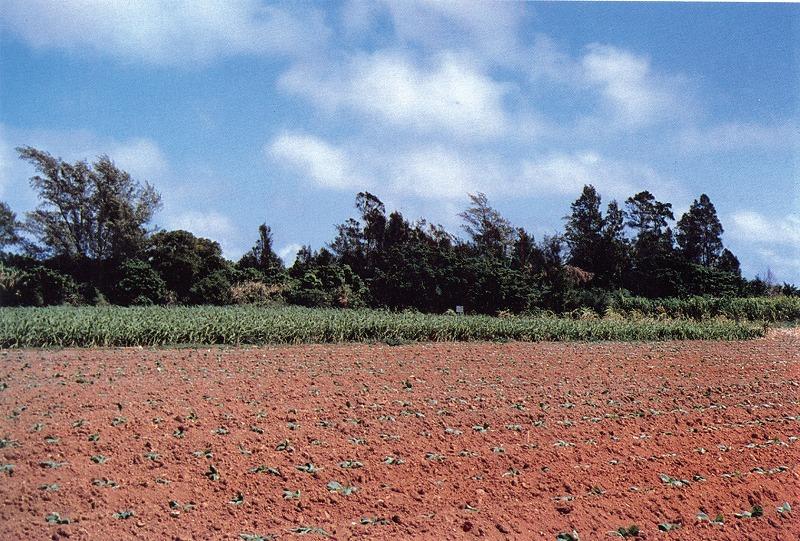 テマカ城跡