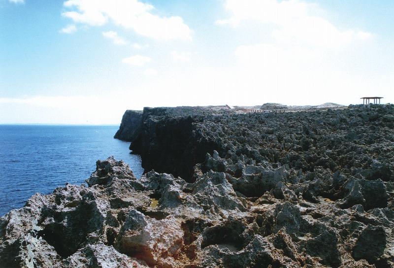 白鳥崎岩礁海岸地域